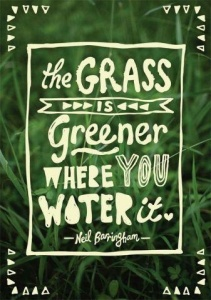 Grass is always Greener where you water it