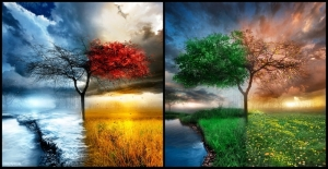seasons-blog