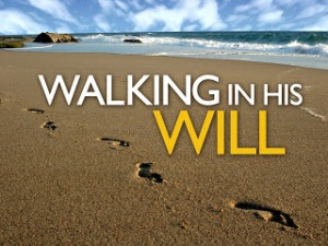 walking-in-his-will_t_nv